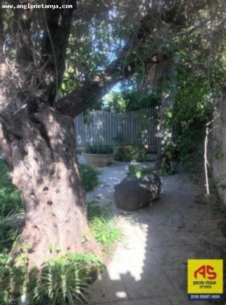 Real Estate Israel - Netanya North A rustic cottage + basement adjacent to Moshav Avihail, large, separate master suite, green garden... Anglo Saxon Netanya