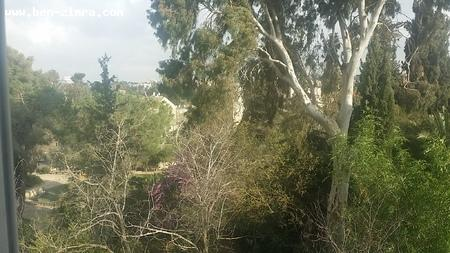 Real Estate Israel - Jerusalem Old Katamon Charming, Perfectly Renovated, 3 room in the heart of Old Katamon. 3 exposures, full of light and... Ben Zimra Real Estate